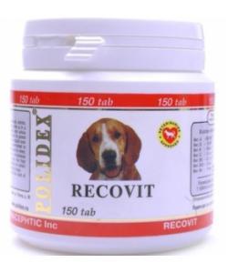 Витаминно-минеральный комплекс Recovit для собак после болезней, травм
